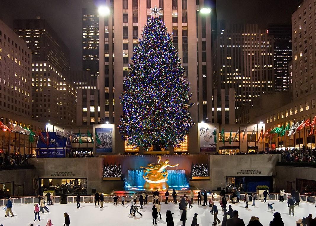 Albero Di Natale New York.We The Italians New York L Albero Di Natale Piu Famoso Al Mondo E Figlio Di Un Italiano